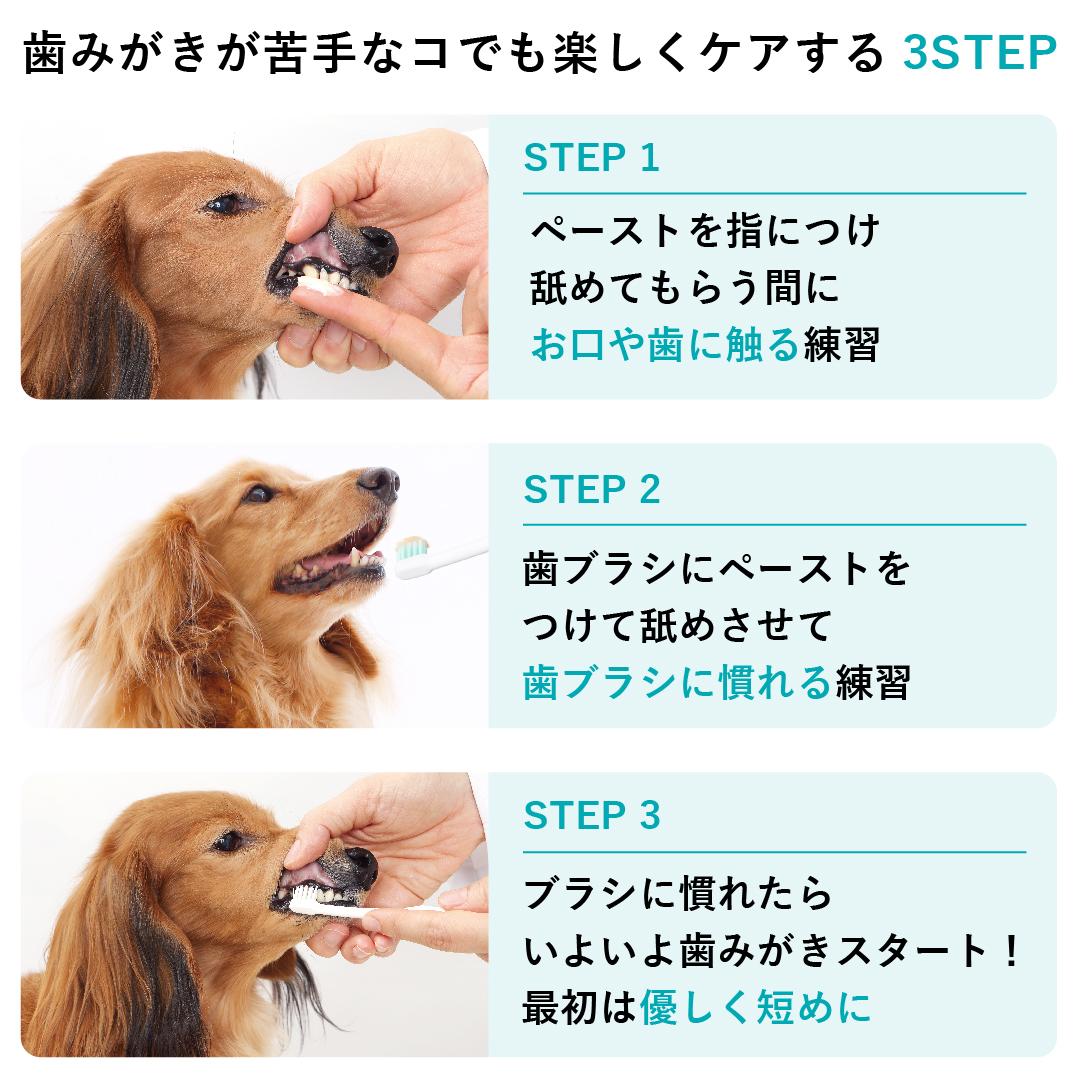 ビルバックの歯みがきペーストは、ブラシにつけて使うことで歯みがきをおいしく楽しい時間に変身させるアイテムです。1回分のめやすは約2cm(人差し指の第一関節くらいまで)