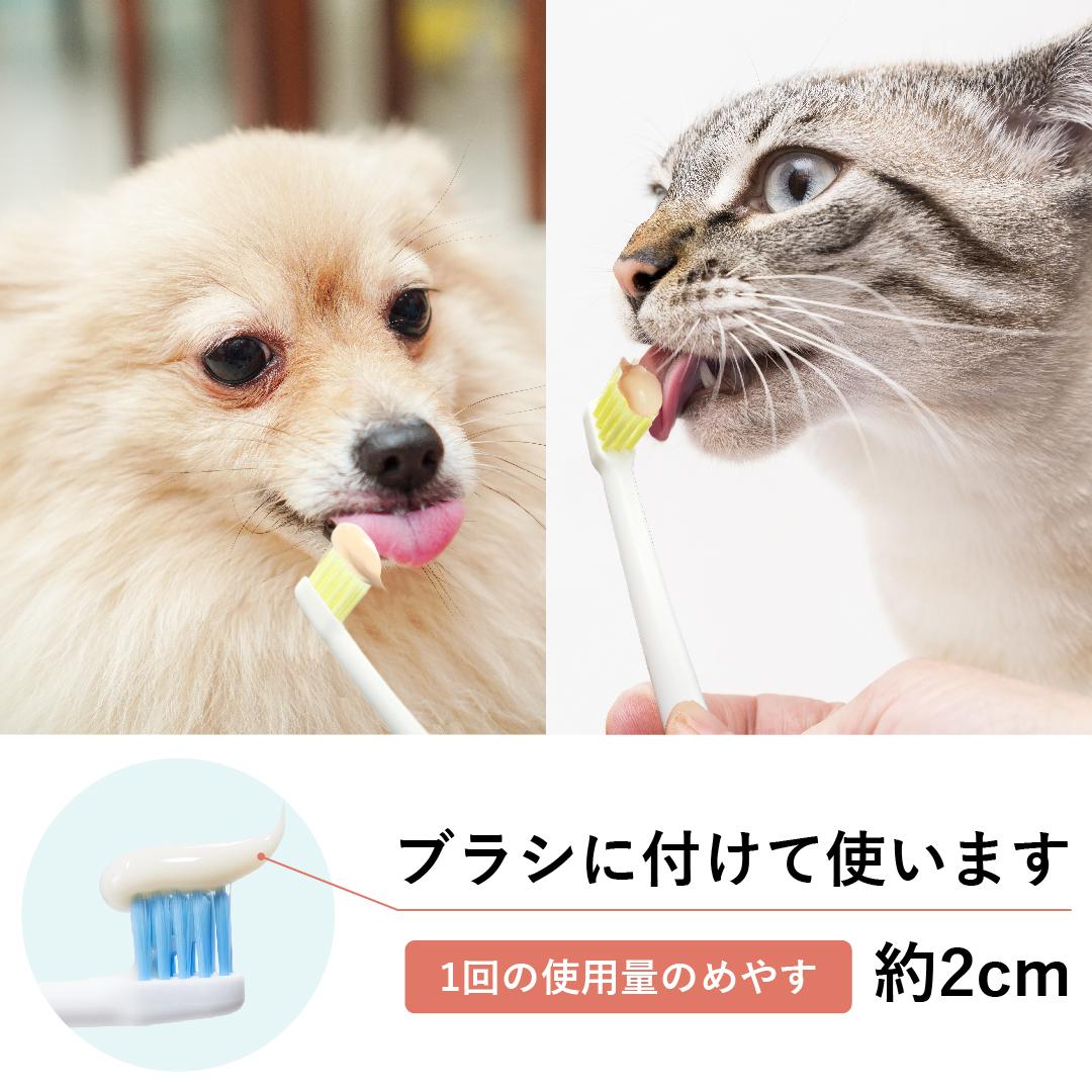 ビルバックの歯みがきペーストは、他のアイテムと組み合わせることでより使いやすくなります。