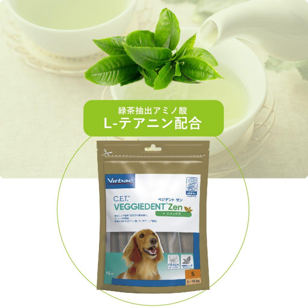 【魅力3】緑茶含有アミノ酸(L-テアニン)配合